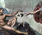 Pugs In Art History
