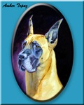 Great Dane Amber Topaz