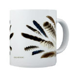 Feather Groups - Housewares and Miscellany
