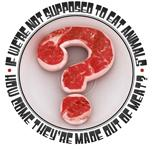 WHY SHOULDN'T WE EAT MEAT?