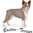 Boston Terrier T-shirt, Boston Terrier T-shirts