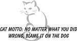 Cat Motto