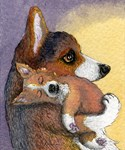 Corgi mother and pup