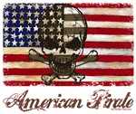 Painted American Pirate Flag