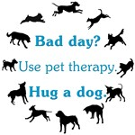Bad Day Therapy v2