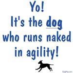 Dogs Run Naked