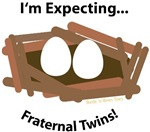 I'm Expecting Fraternal Twins!
