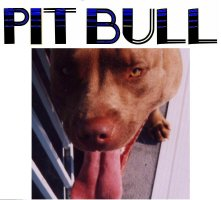 PIT BULL LOVE (BIG BONE ON BACK OF MOST ITEMS)