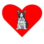 Boston Terrier Heart