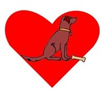 Chesapeake Bay Retriever Heart