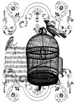 Music Bird Cage