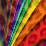 animalprint rainbow