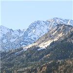 austrian landscape-digital edited