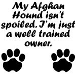Well Trained Afghan Hound Owner