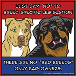 Anti-BSL Rotty and Pit