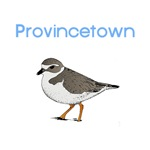Provincetown, MA T-Shirts
