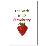 The World is My Strawberry text