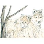 Children Wolf