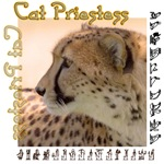 Cat Priestess
