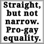 Straight, but not narrow. Pro-gay equality.