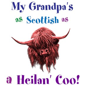 Funny Highland Cows