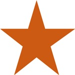 Five Pointed Burnt Orange Star