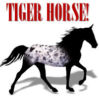 Tiger Horse Merchandise