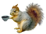 Beatnik Squirrel