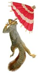 Squirrel with Parasol