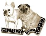 Buddy & Coco's Aisle