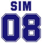 Sim 08