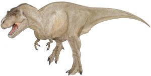Tyrannosaurus Rex Design