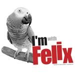 Felix Stuff