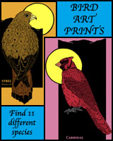 BIRD ART PRINTS