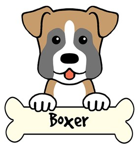 The Boxer Store