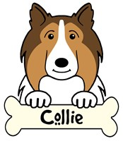 Personalized Collie