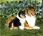 Rough Collie Mom and Pup