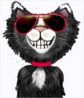 Black and White Cat<br>Dude in Sunglasses