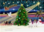 CHRISTMAS MAGIC<br>& Jack Russell Terrier