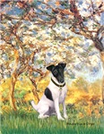 SPRING<br>& Smooth Fox Terrier