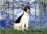 WATER LILIES<br>& Rat Terrier