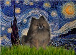 STARRY NIGHT<br>& Pomeranian