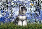 LILIES(#6)<br>Miniature Schnauzer (cropped ears)#7
