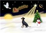 NIGHT FLIGHT<br>& Manchester Terrier