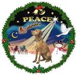 CHRISTMAS SUNRISE<br>& Vizsla