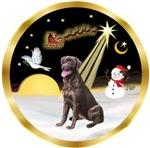 NIGHT FLIGHT<br>& Labrador Retriever