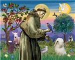 Saint Francis &<br>Tibetan Terrier