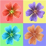 Flower & Floral Gifts & T-Shirts