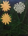 Yellow White Flowers