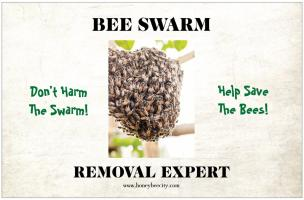 Swarm Removal Expert